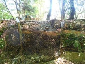 Gestion des déchets verts du jardin
