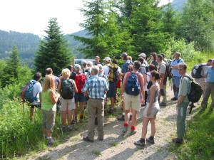 Mont Forchat (SIE des Moises)